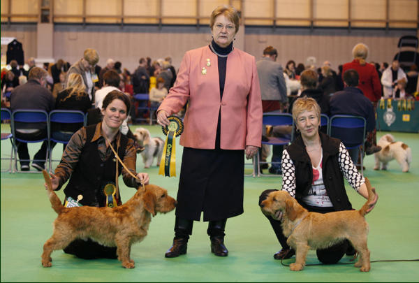 Crufts Winners 2008    /   image subject to  © copyright